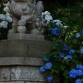 605 成沢鹿島神社