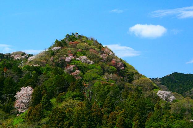 756 むかし話の山 曙山