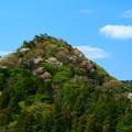 Photos: 667 むかし話の山 曙山