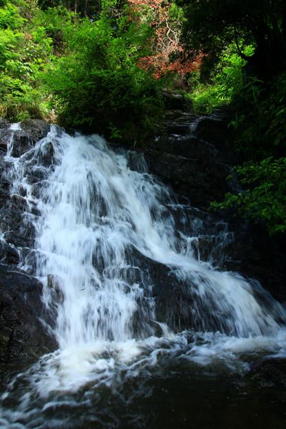 Photos: 307 北川の女滝