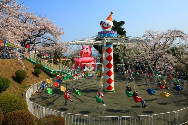 Photos: かみね遊園地