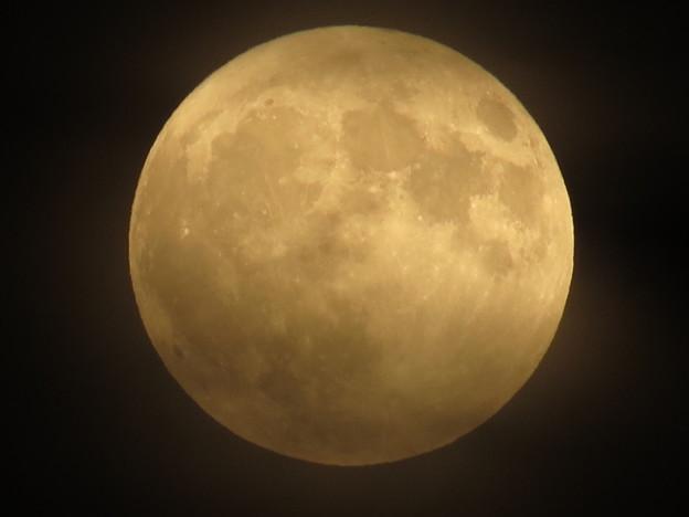 朧な満月(19:11)♪