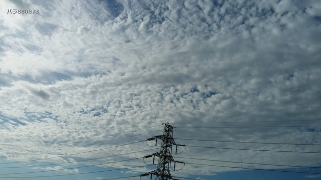 ウロコ雲と高圧鉄塔♪