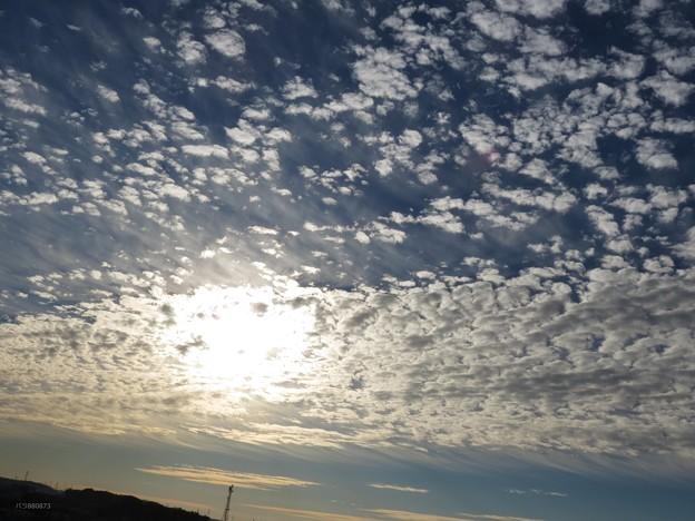 Photos: 遅い朝陽とウロコ雲(2)