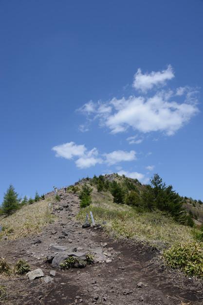 写真: 烏帽子岳を見上げる