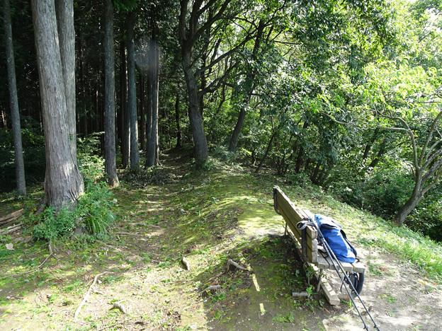 定峰峠からの路(写真)