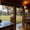 レストランから庭を見ながら