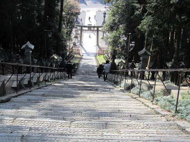 27.11.22鹽竈神社表参道