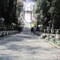 写真: 27.11.22鹽竈神社表参道