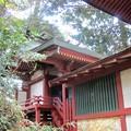 Photos: 27.12.6鼻節神社本殿