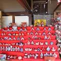 Photos: 28.2.29旧亀井邸の雛飾り