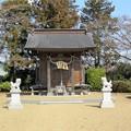 Photos: 28.3.31八幡宮(中新田)