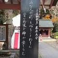 Photos: 30.12.1「玉葉和歌集」藤原為守
