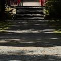 Photos: 盛岡城跡公園 180912 (3)