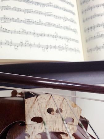 中野・江古田 バイオリン 個人レッスン ヴィオラ 吉瀬弥恵子 ワイズ音楽教室 提案
