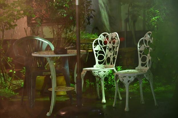 Photos: 白い椅子
