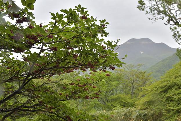 Photos: 那須のお山を遠くに見て・・・