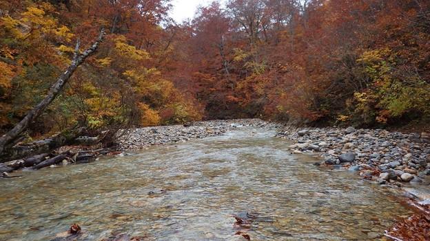 利根川源流域