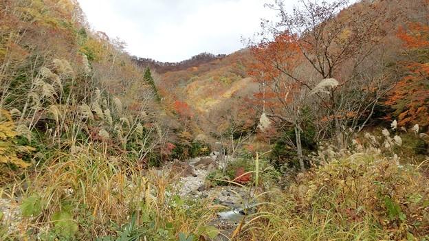 宝川温泉付近
