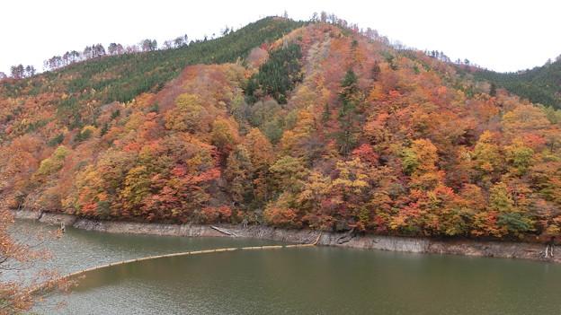 洞元湖左岸