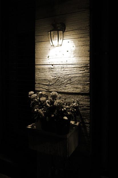 灯りが恋しくなる頃