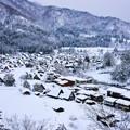 写真: 冰雪中的白川?全景