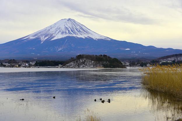 写真: 河口湖與富士山