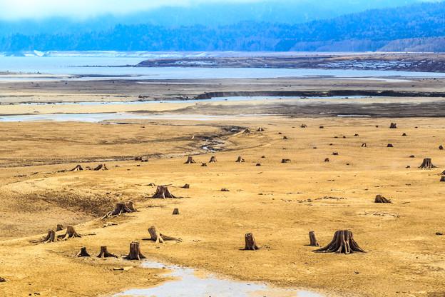 春の糠平湖
