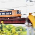 カラシナ列車