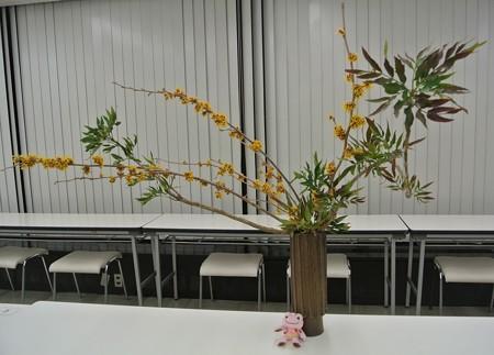 わたしの新年の花(before)
